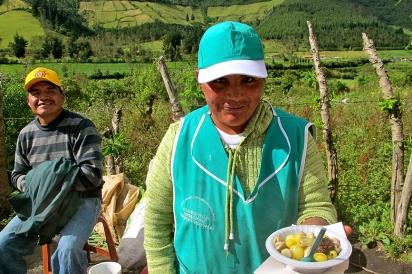 Quinoa Farmer