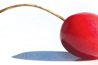 Idaho Cherry