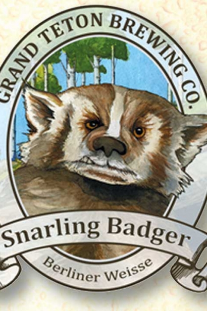 Snarling Badger Berline Weisse